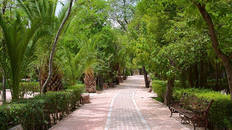 2 Blocks to Parque Juárez